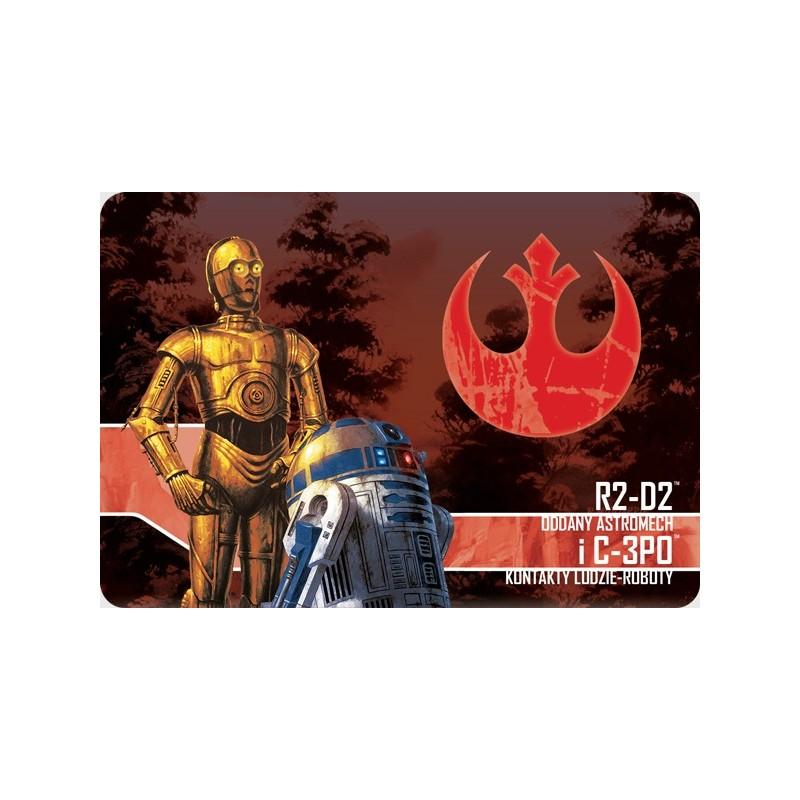 R2-DW, Oddany astromech i C-3PO, Konktakty ludzie-roboty