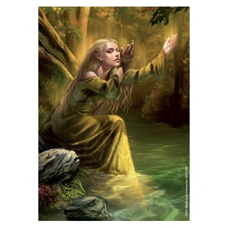 Koszulki Art Sleeves - Golden Wood Singer