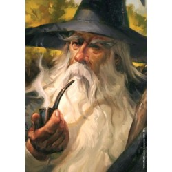 Koszulki Art Sleeves - Gandalf